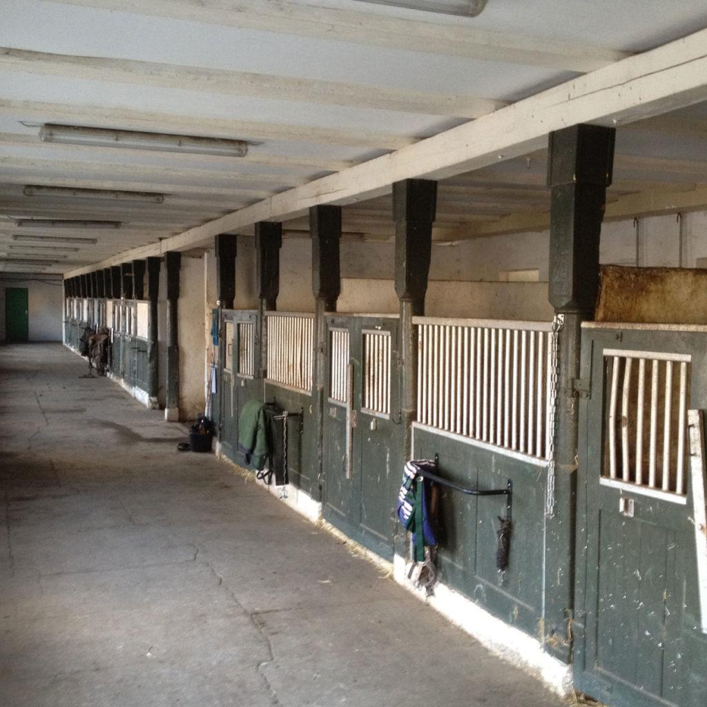 Opstaldning og hestepension på Djursland